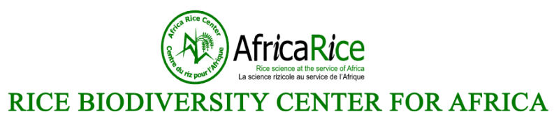 Rice Biodiversity Center Logo